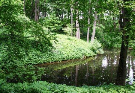 По парку Ясной Поляны