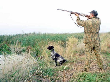Охота в Крынках
