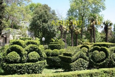 В парках Гурзуфа