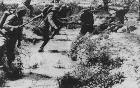 Крымские заповедники во время войны