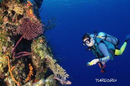 Активный отдых в Доминикане