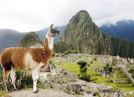 Перу (фото)