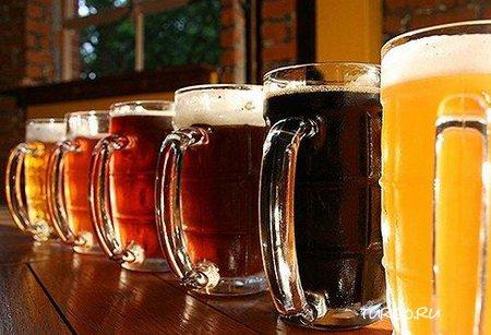 Продажа пива в кегах